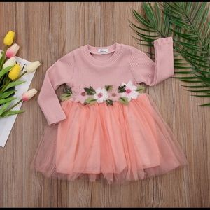 Other - NWT girls embroidered floral pink tulle dress